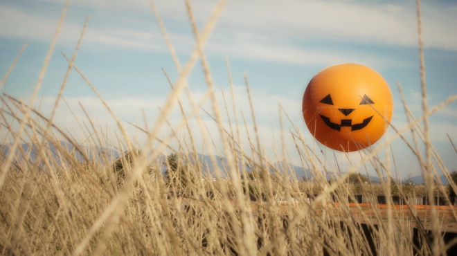 its-the-great-park-balloon-pumpkin