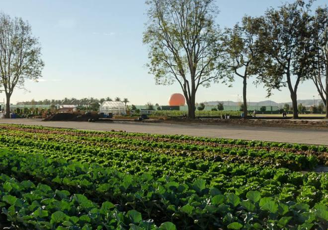 incredible.edible.farm.01