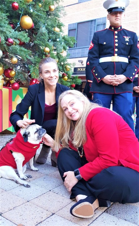 5th Marines Vietnam – Melissa Fox for California